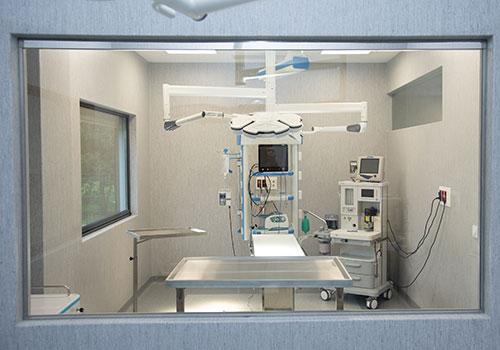 Especialidades Veterinarias, Clínica Veterinaria