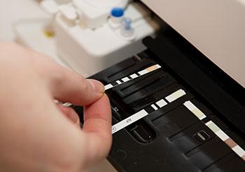 laboratorio propio, hematología